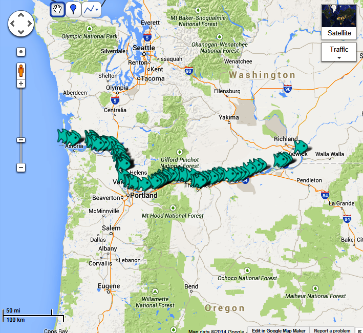 Columbia river fishing access fishing reports maps for Columbia river fishing report