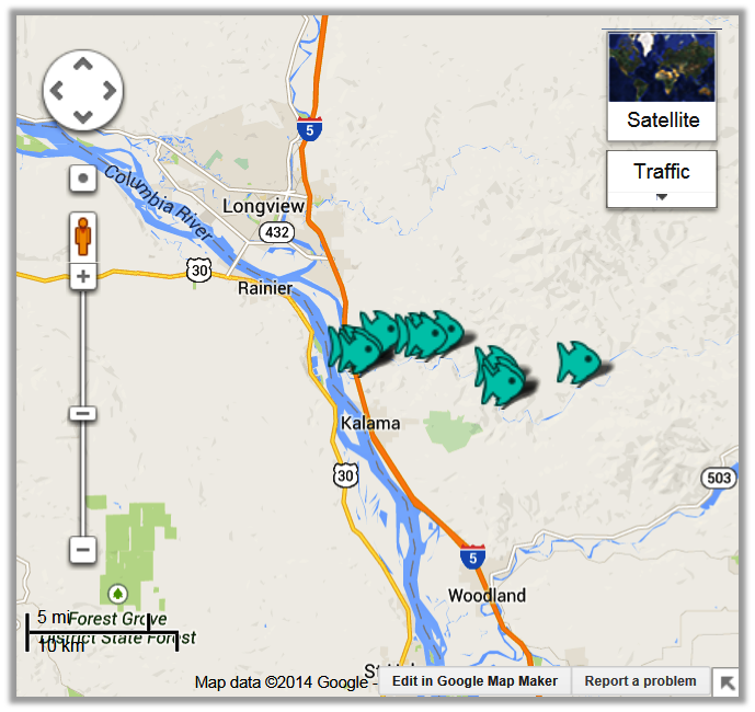 kalama river fishing access fishing reports maps