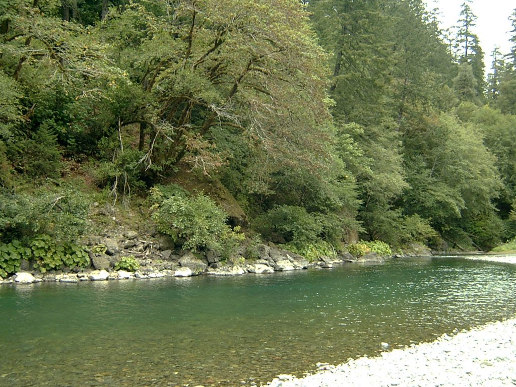 2017 chetco river fishing report the lunkers guide